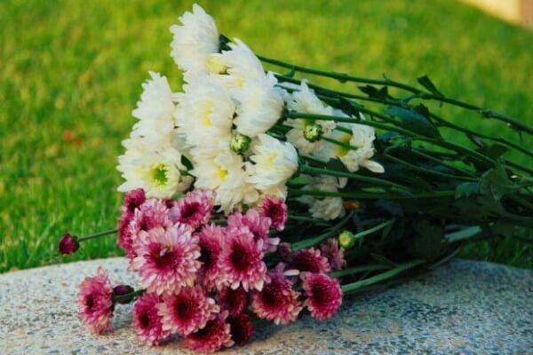 Assistência funeral o que você precisa saber - Movida